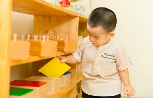 Nhược điểm của phương pháp giáo dục Montetssori bạn chưa biết